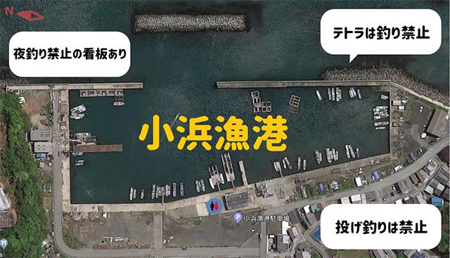 三重県鳥羽市・日本最多の魚種!鳥羽水族館で遊んだあと小浜漁港で ...